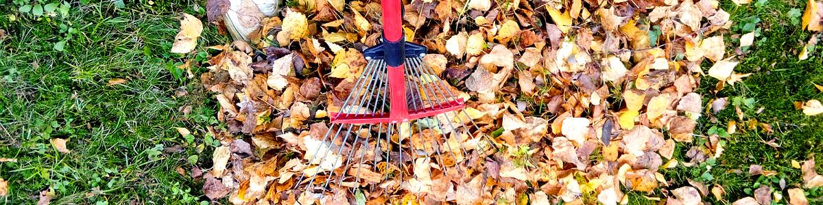 Mit VIT entspannt durch Herbst und Winter!
